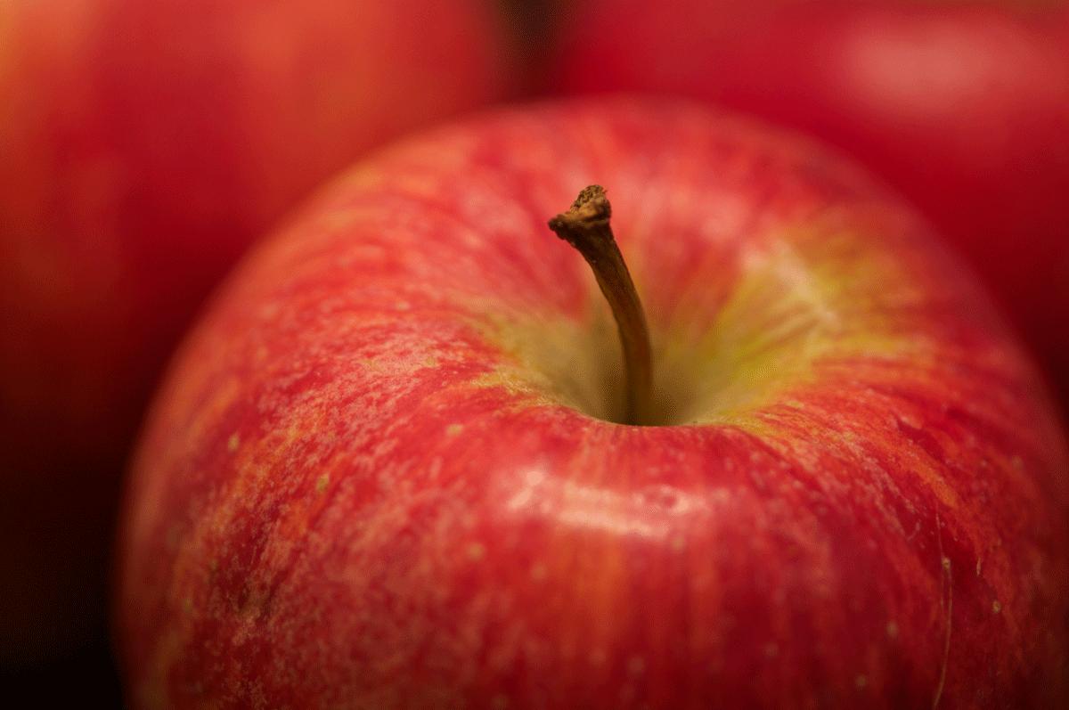 Apfel 'Gala' © GartenAkademie.com