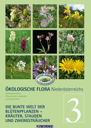 flora_noe_band_3_umschlag0175