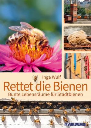 Bienen3_300914.indd
