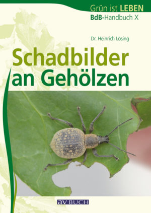 schadbilder_an_gehoelzen0460