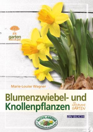blumenzwiebel-und-knollenpflanzen